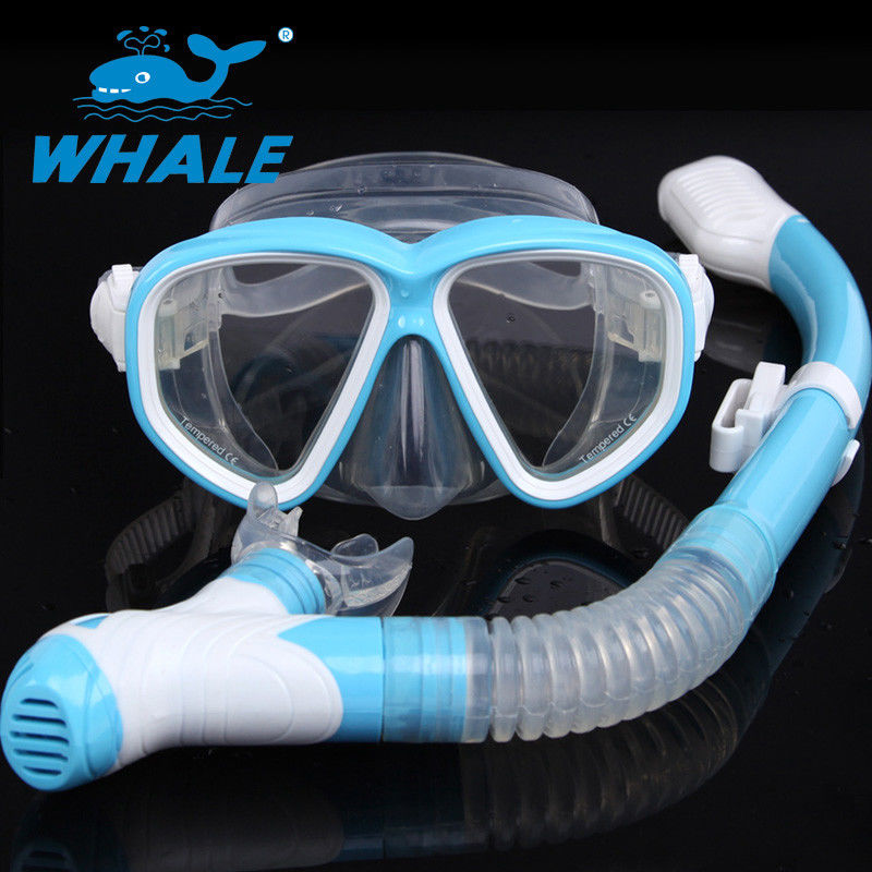 Watertight Anti Fog Lens Diving Mask Set Dry Top Snorkel Tempered Glass